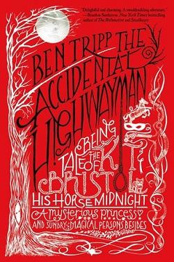 The Accidental Highwayman by Ben Tripp