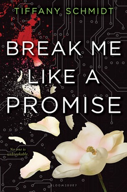 Break Me Like a Promise by Tiffany Schmidt